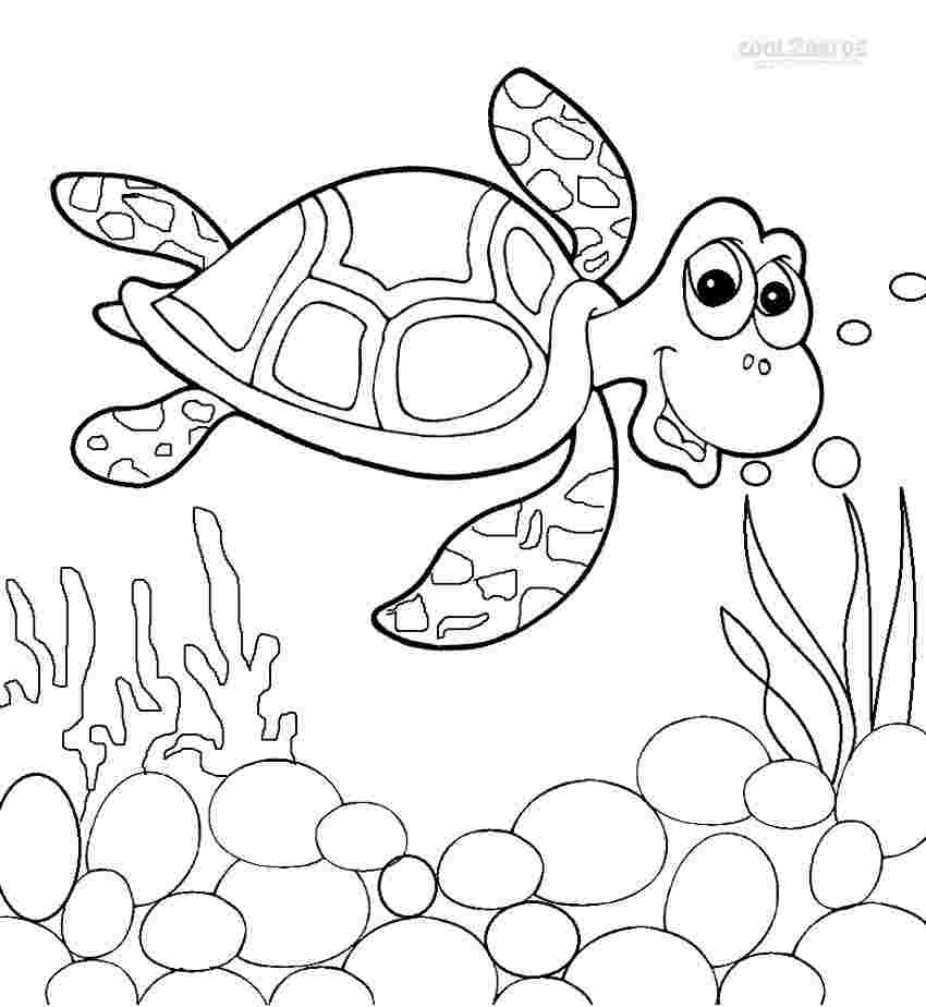 - Sea Turtle Coloring Pages Pictures - Whitesbelfast