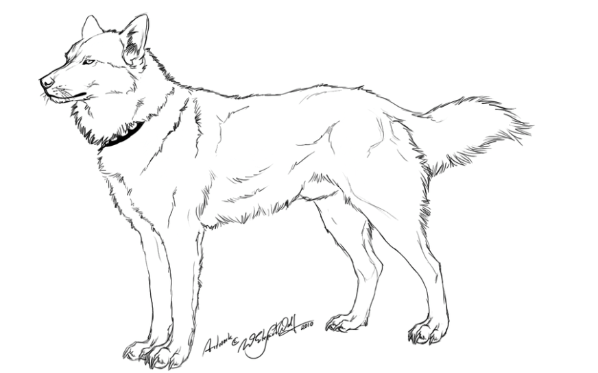 free searchqhusky download free clip art free clip art on