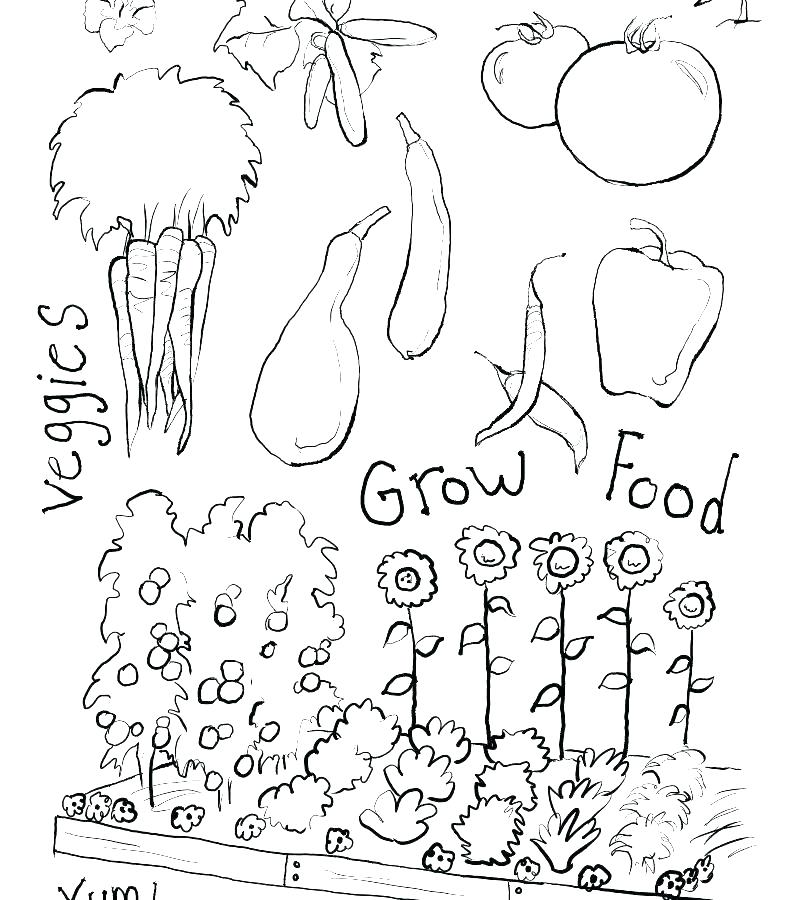 garden coloring pages cangkemclub