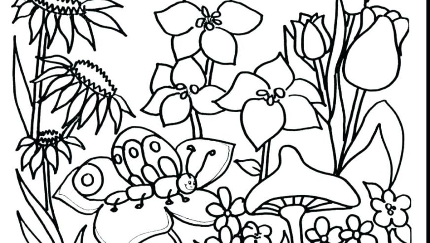 garden coloring pages free filelocker