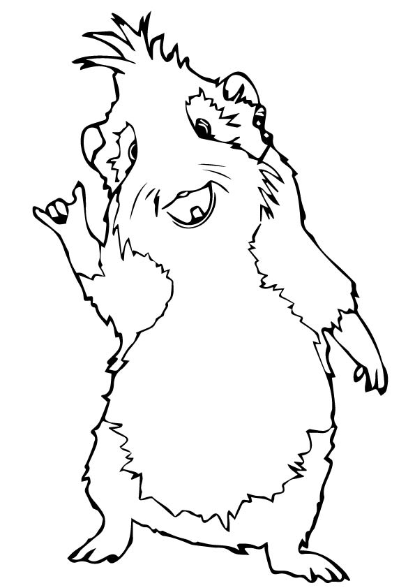 guinea pig coloring pages best coloring pages for kids