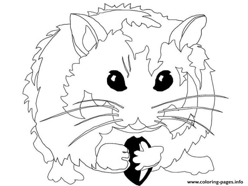 hamster s for kidsd82e coloring pages printable