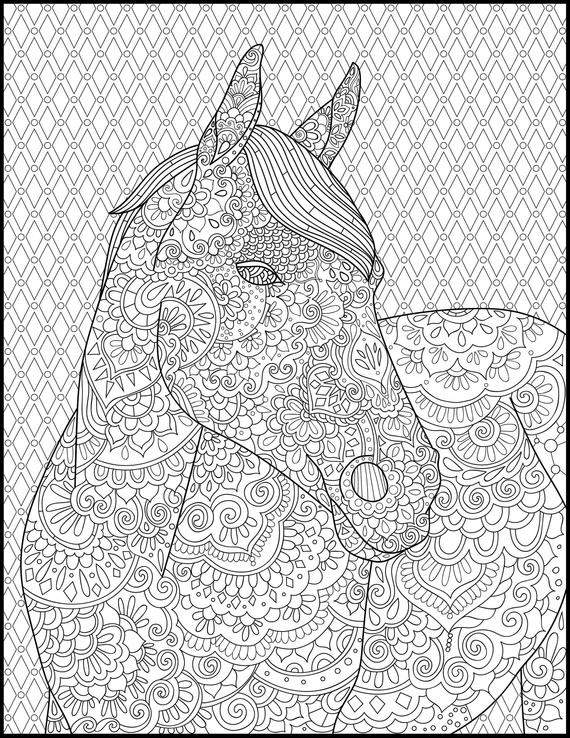 horse coloring page for adults adult coloring pages printable coloring page horse lover gift animal coloring page grown up coloring