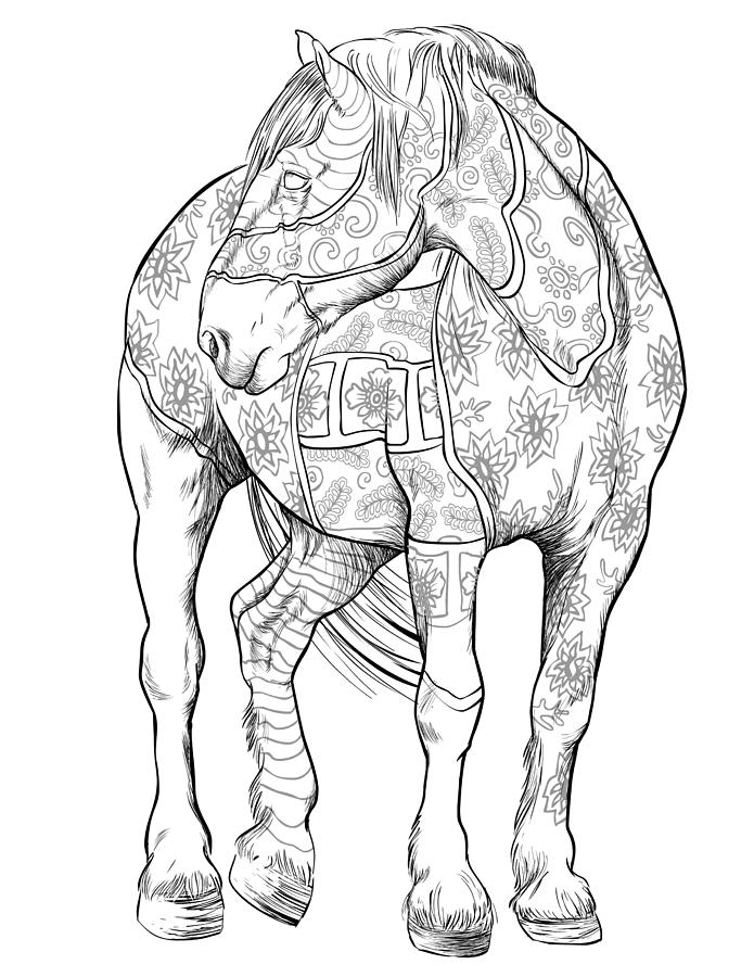 horse coloring pages for adults best coloring pages for kids