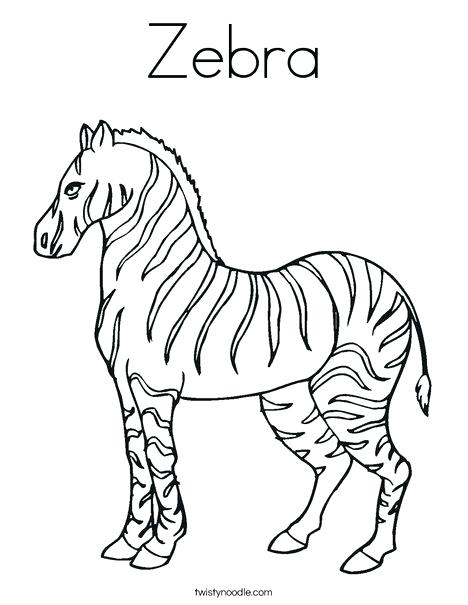 images of zebra coloring pages hottestnews