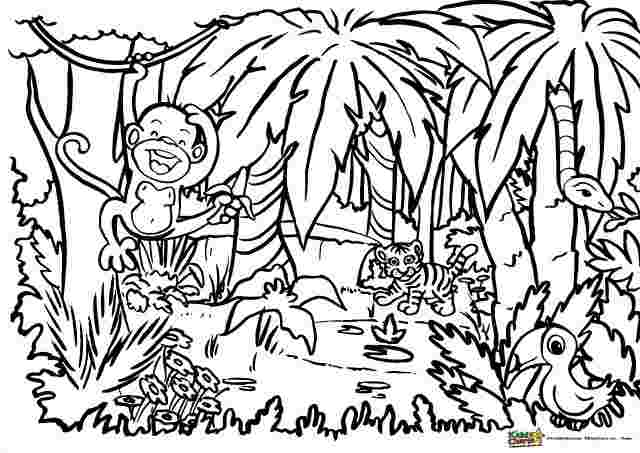jungle coloring pages for preschoolers pin brad bryant on