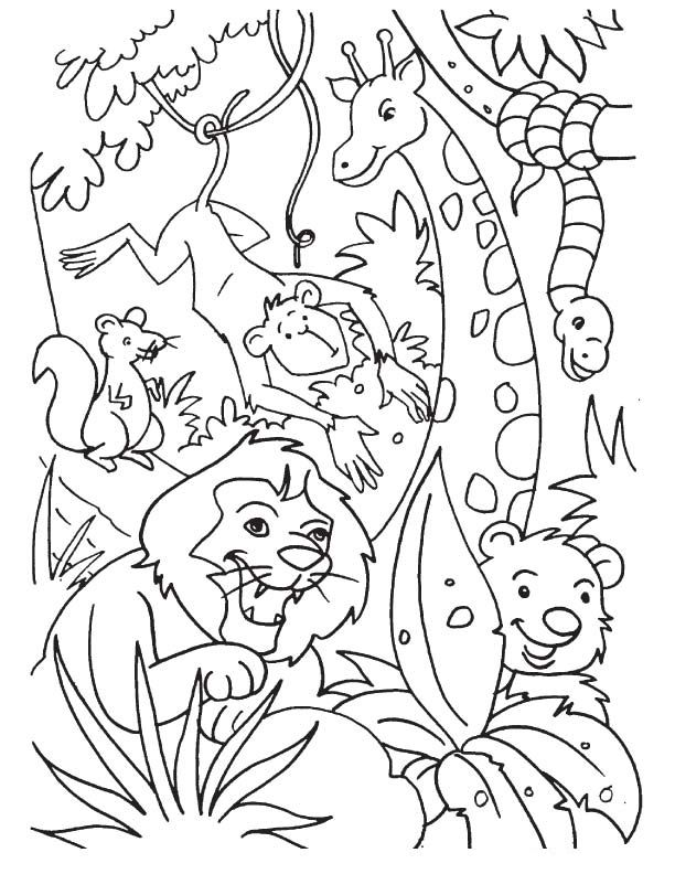 jungle coloring pages jungle coloring pages animal