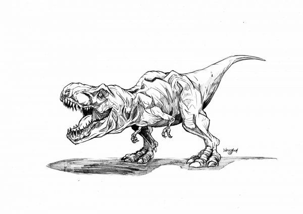jurassic park t rex coloring page printable dinosaurier