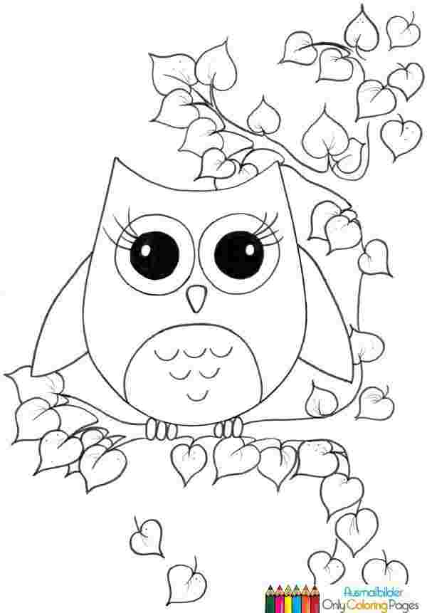 just coloring ba owl coloring pages ba owl coloring