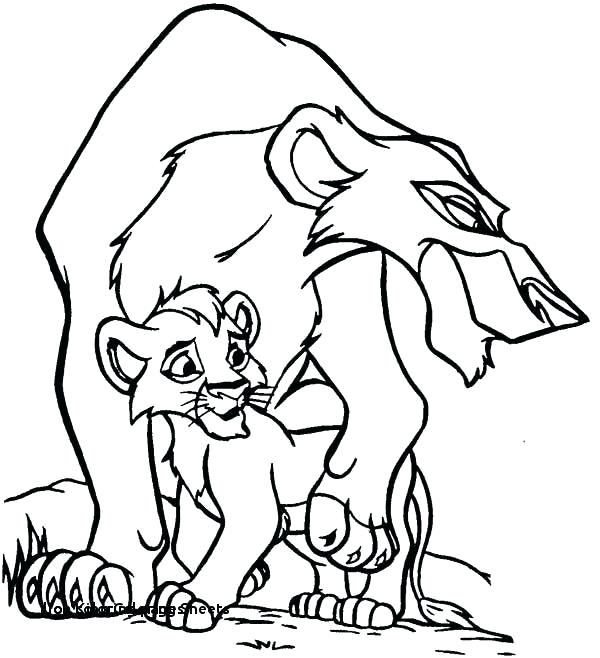 lion template coloring page pages face animal colouring