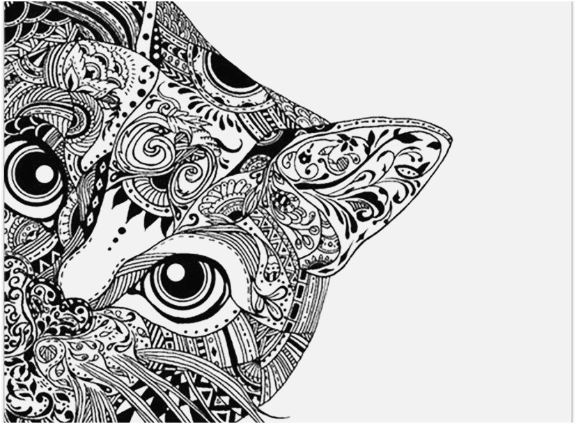 mandala animal coloring pages shoot adult coloring pages