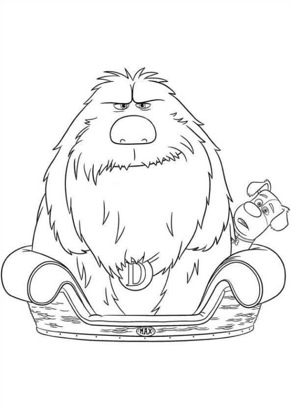 max and duke of the secret life of pets coloring pages for you