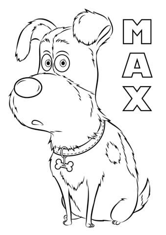max from the secret life of pets omalovnka free printable
