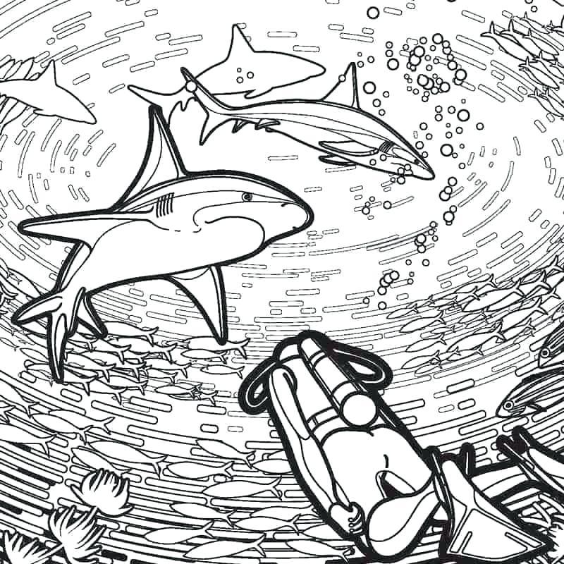 megalodon shark coloring pages pictures gameuzclub