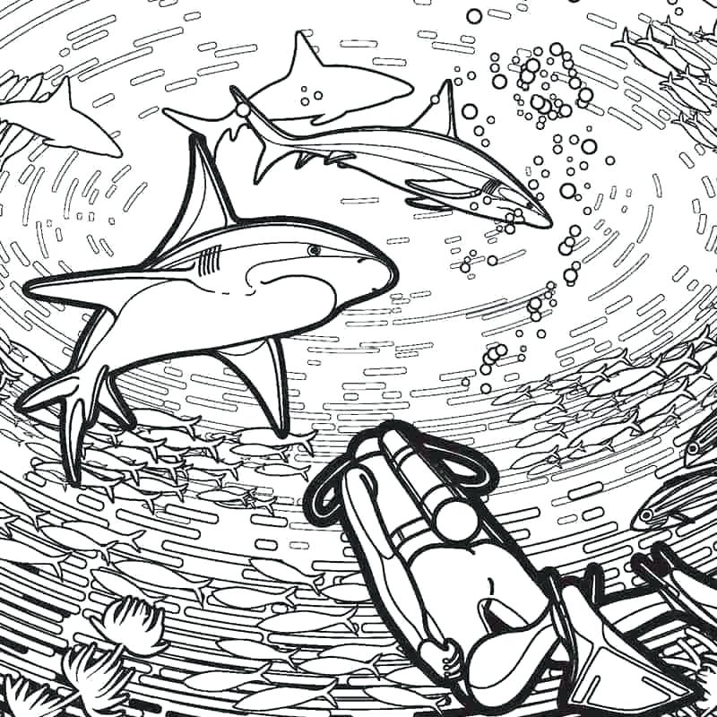 megalodon shark coloring pages pictures gameuzclub