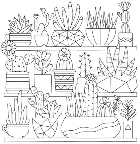 mindful succulents coloring book a tiny terrarium coloring