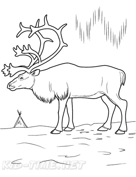 moose coloring book pages coloring book page free coloring