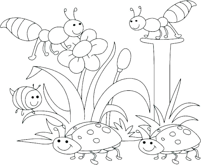 nature coloring pages wircoclub