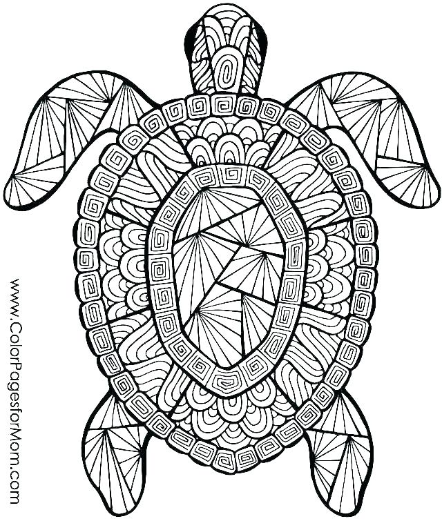 ocean animal coloring sheets arpitbatra