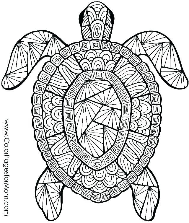 ocean animal coloring sheets arpitbatra
