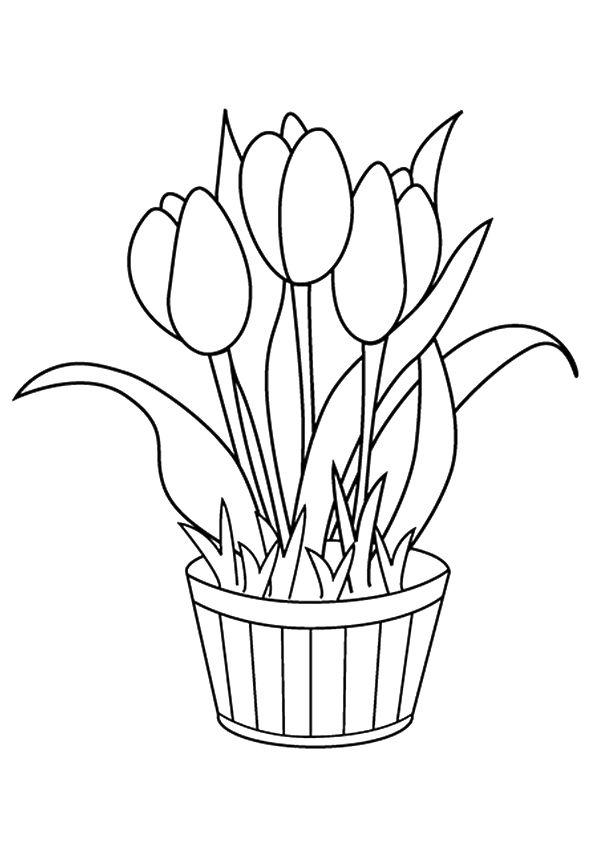 parentune free printable the tulip coloring picture