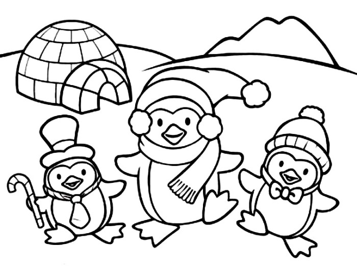penguin 56 animals printable coloring pages