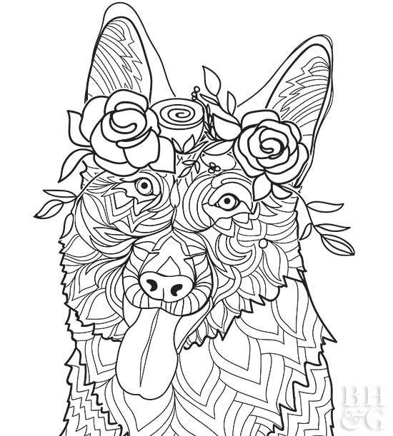 Coloring Pages Dogs Idea Whitesbelfast