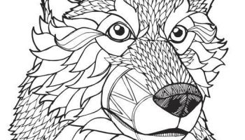 Coloring Pages Of Wolves - Coloring Home | 200x350
