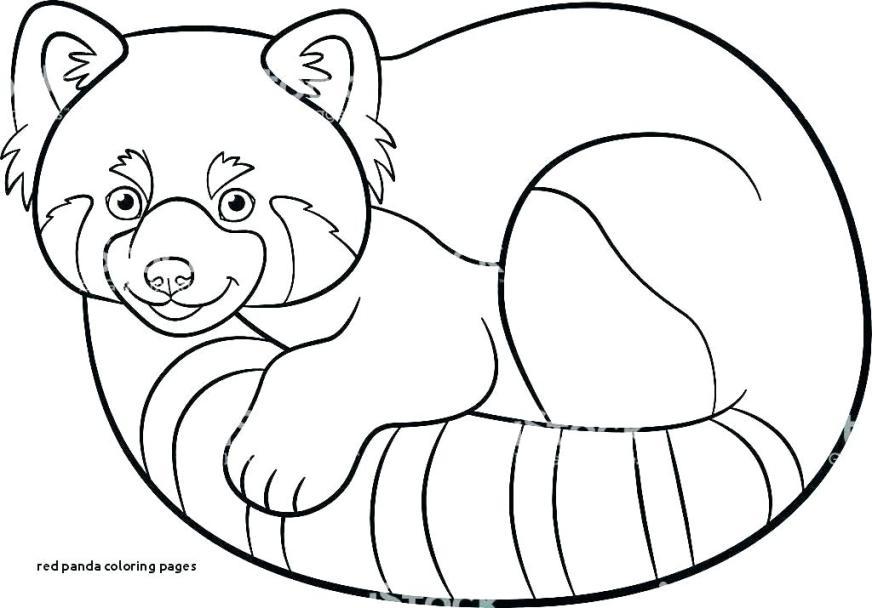 printable coloring page panda pusat hobi