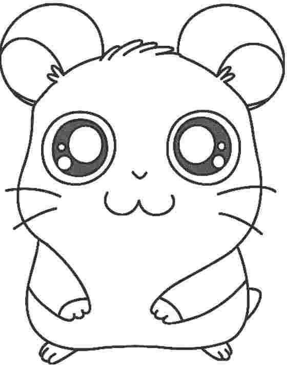 printable cute hamster coloring pages hamster facts