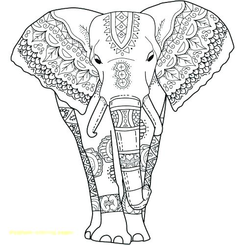 printable elephant coloring pages for adults at getdrawings