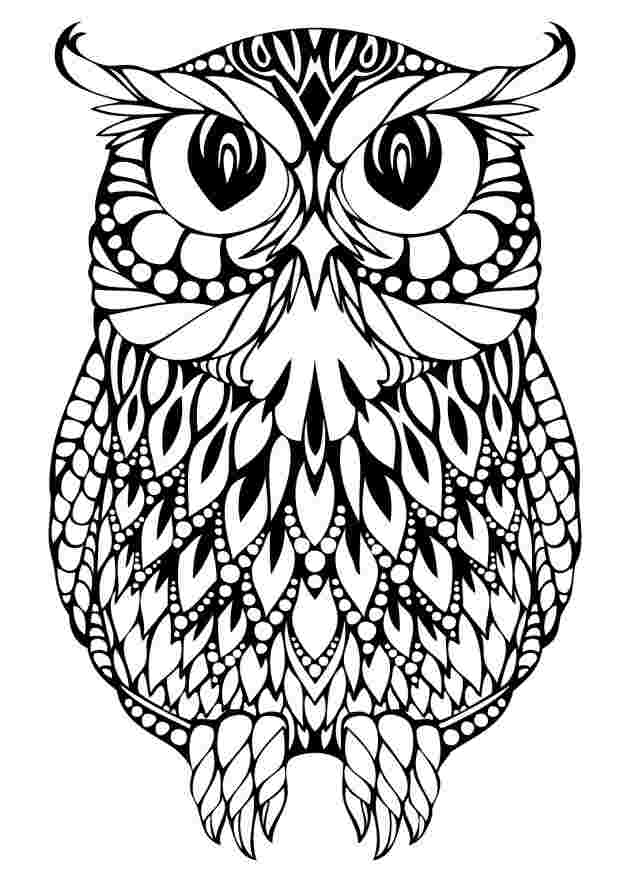 printable owl coloring pages for free owl coloring pages for