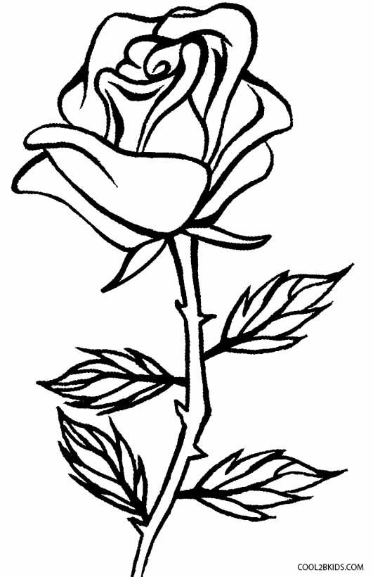 printable rose coloring pages for kids cool2bkids rose