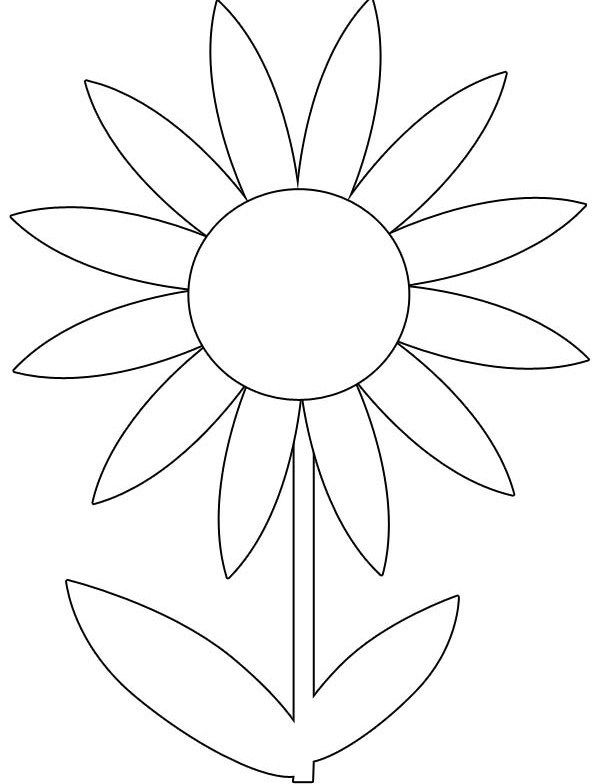 printable spring flowers colouring pages free flower