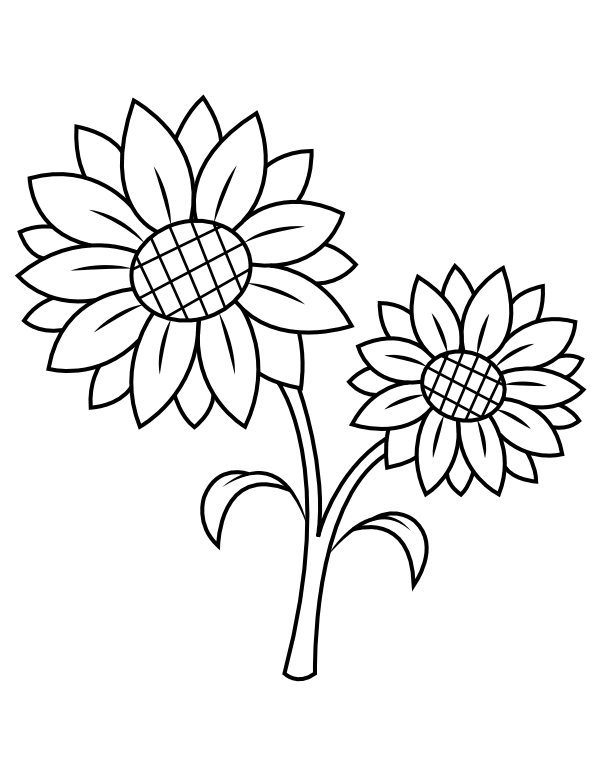printable sunflower coloring page