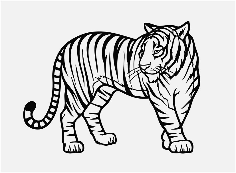 printable zoo animals photo zoo animal coloring pages tiger