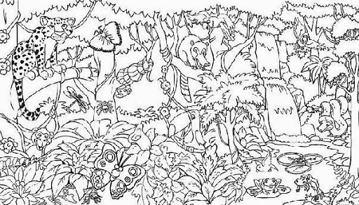 rainforest coloring pages free