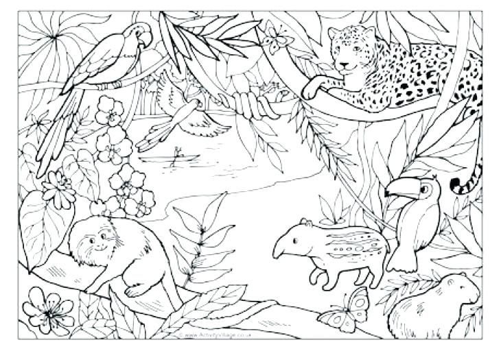 real animal coloring pages jungle coloring pages and