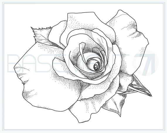 rose coloring page printable flower adult colouring page of original hand drawn flower drawing instant download