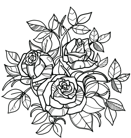 roses coloring page free printable coloring pages
