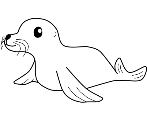 seal coloring page free printable coloring pages