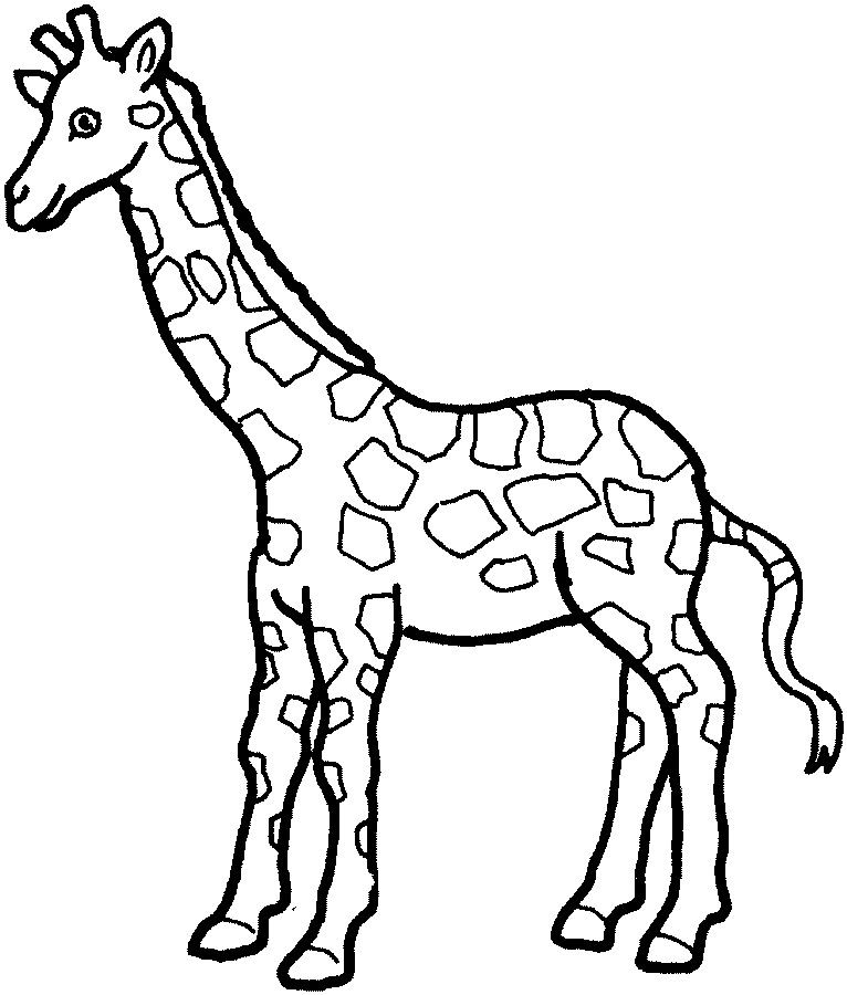 Giraffe Coloring Pages Ideas - Whitesbelfast