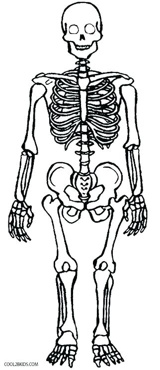 skeleton coloring pages halloween superfresco