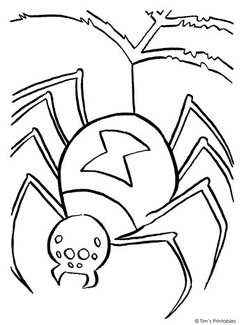 spider coloring page tims printables