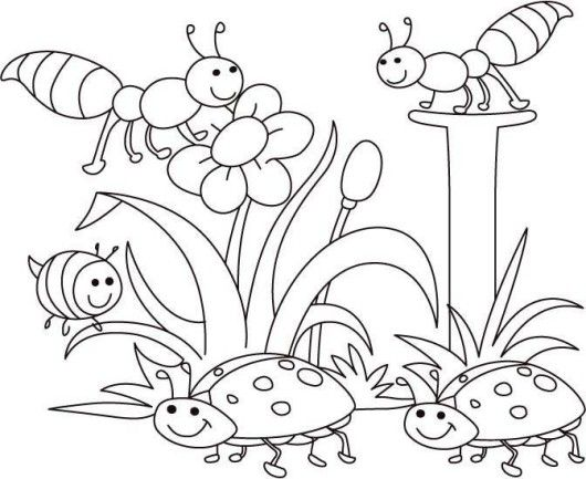 spring bugs coloring pages bug coloring pages spring