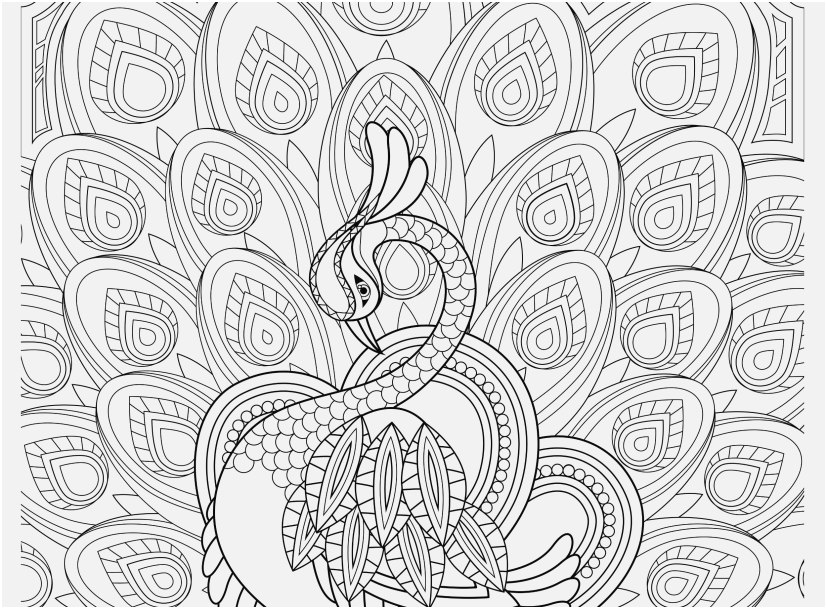 stress relief coloring pages collection peacock feather