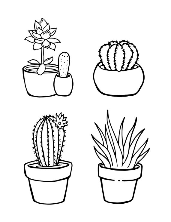 succulents coloring pages cactus coloring pages part 2 set of three