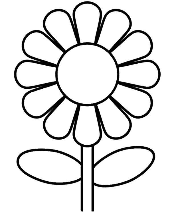 sunflower coloring page sunflower coloring pages