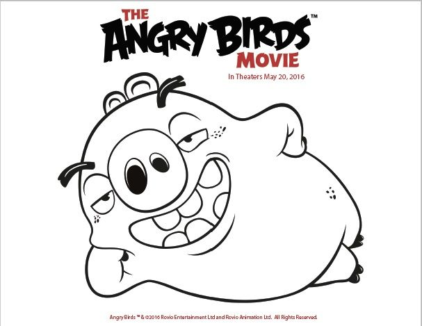 the angry birds movie is coming to theaters may 20th are