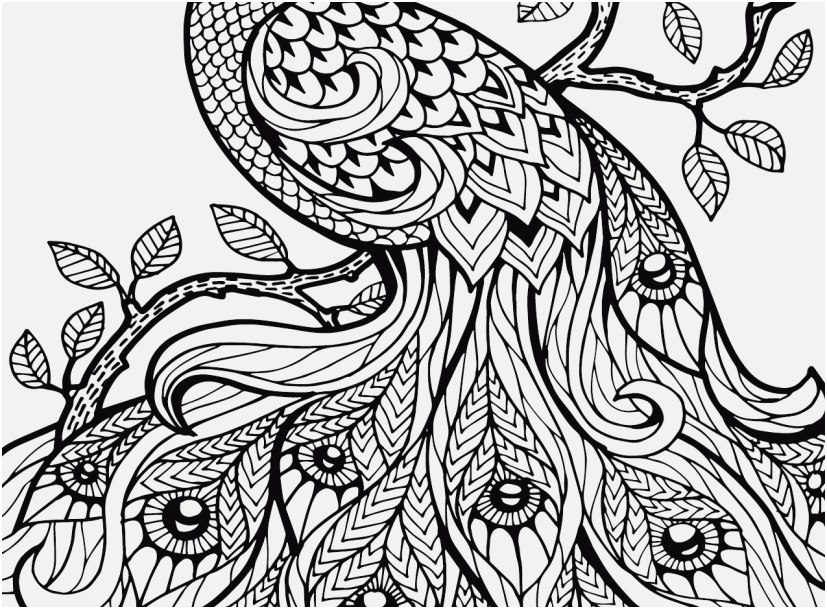 the ideal concept coloring pages for adults nature most